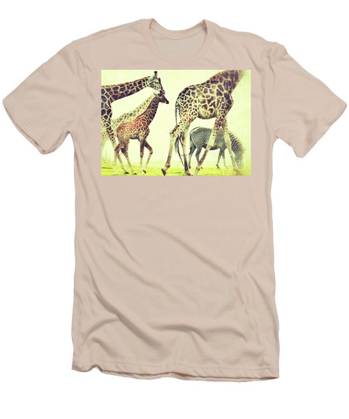Men's T-Shirt (Slim Fit) featuring the photograph Giraffes And A Zebra In The Mist by Nick  Biemans