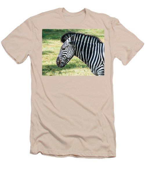Grazing Zebra Men's T-Shirt (Athletic Fit)