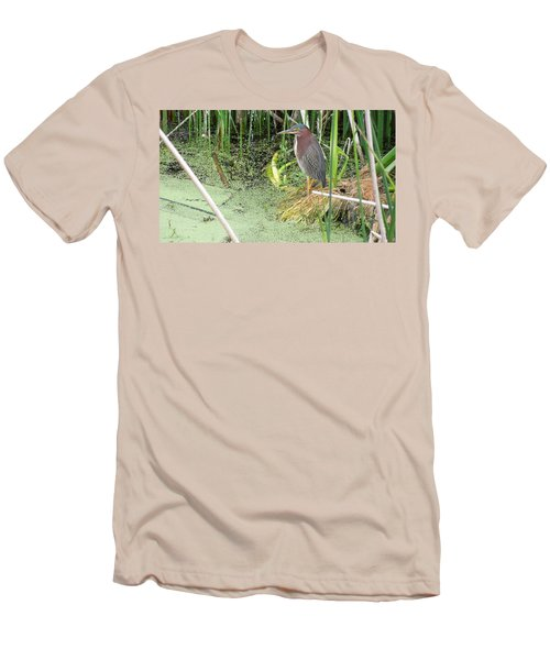 Men's T-Shirt (Slim Fit) featuring the pyrography Green Heron by Ron Davidson
