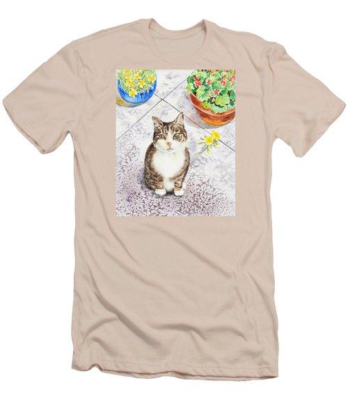 Here Kitty Kitty Kitty Men's T-Shirt (Slim Fit) by Irina Sztukowski