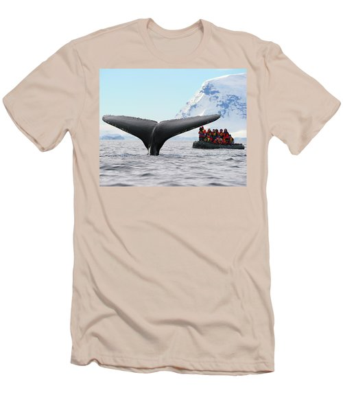 Humpback Whale Fluke  Men's T-Shirt (Athletic Fit)