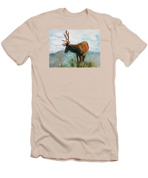 King Of The Hill Men's T-Shirt (Athletic Fit)