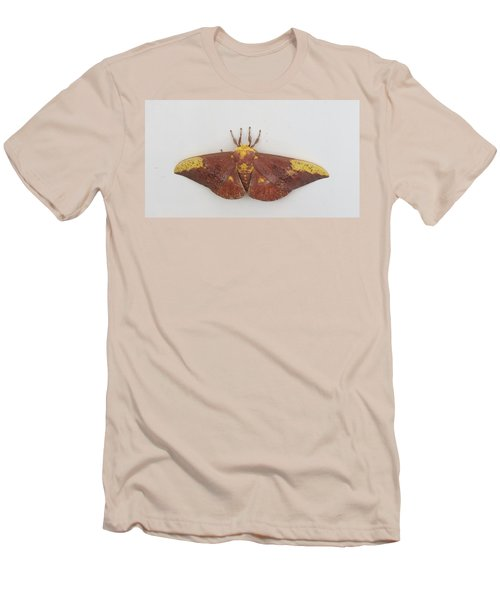 Magnificent Moth Men's T-Shirt (Slim Fit)