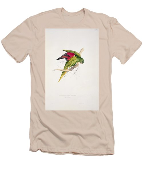 Matons Parakeet Men's T-Shirt (Athletic Fit)