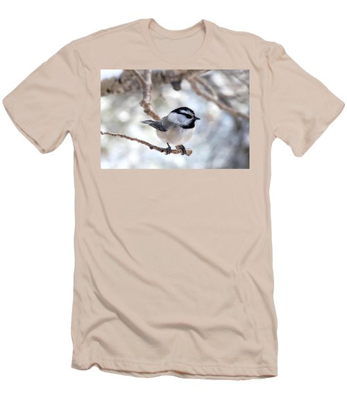 Mountain Chickadee On Branch Men's T-Shirt (Athletic Fit)