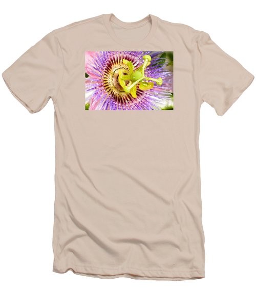 Passiflora The Passion Flower Men's T-Shirt (Slim Fit) by Olga Hamilton