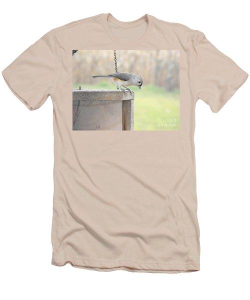 Peeking Chickadee Men's T-Shirt (Athletic Fit)