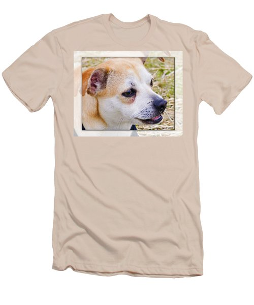 Pets Men's T-Shirt (Slim Fit) by Walter Herrit
