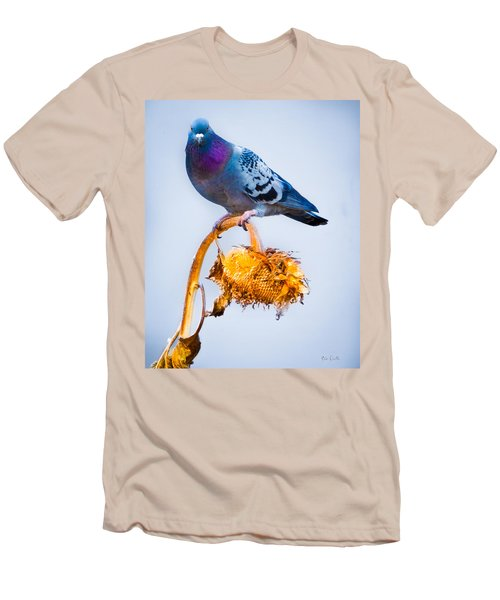 Pigeon On Sunflower Men's T-Shirt (Athletic Fit)