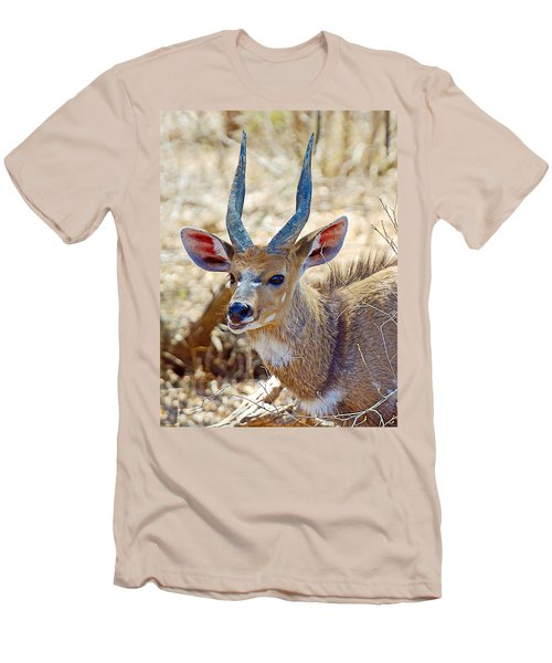 Portrait Of A Bushbuck In Kruger National Park-south Africa  Men's T-Shirt (Athletic Fit)