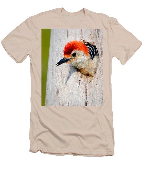 Red-bellied Woodpecker II Men's T-Shirt (Athletic Fit)