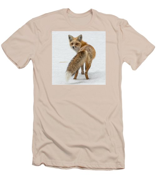 Red Fox Of Silver Gate Men's T-Shirt (Slim Fit) by Yeates Photography