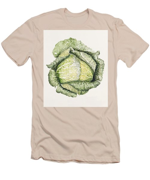 Savoy Cabbage  Men's T-Shirt (Slim Fit) by Alison Cooper