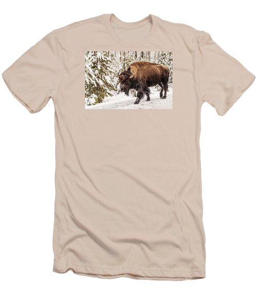 Scary Bison Men's T-Shirt (Slim Fit) by Sue Smith