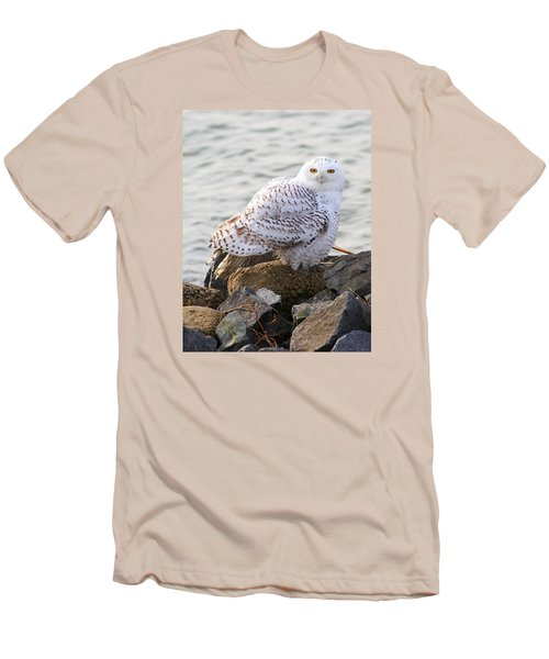 Snowy Owl In New Jersey Men's T-Shirt (Athletic Fit)