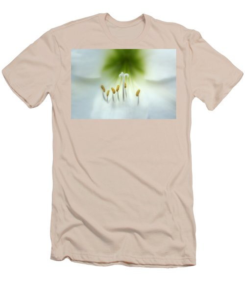 Soft Beauty Men's T-Shirt (Slim Fit) by Lynn Sprowl