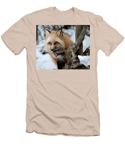 Stunning Sierra Men's T-Shirt (Slim Fit) by Richard Bryce and Family