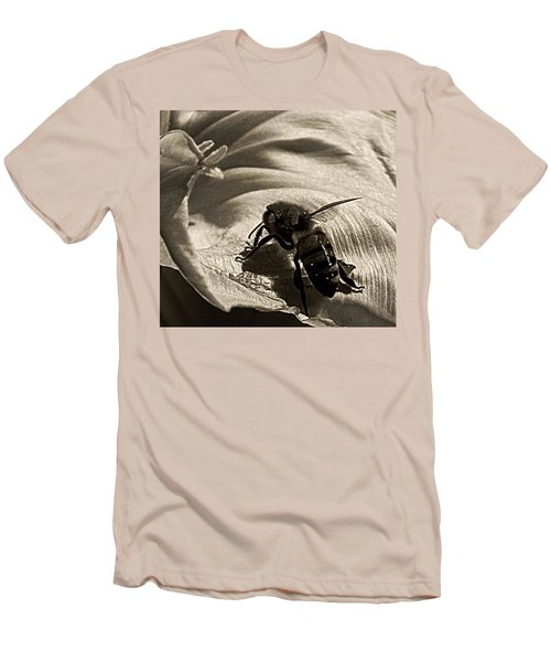 The Pollinator Men's T-Shirt (Athletic Fit)