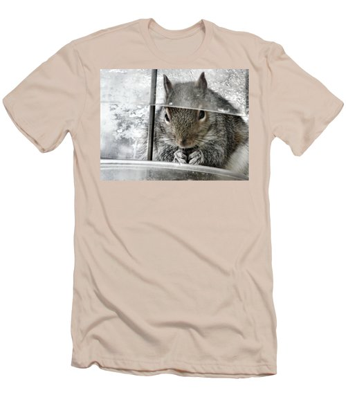 Thief In The Birdfeeder Men's T-Shirt (Athletic Fit)