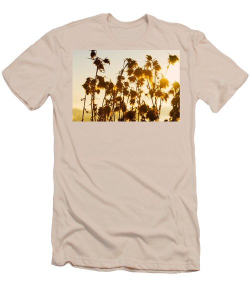 Thistles In The Sunset Men's T-Shirt (Slim Fit) by Chevy Fleet