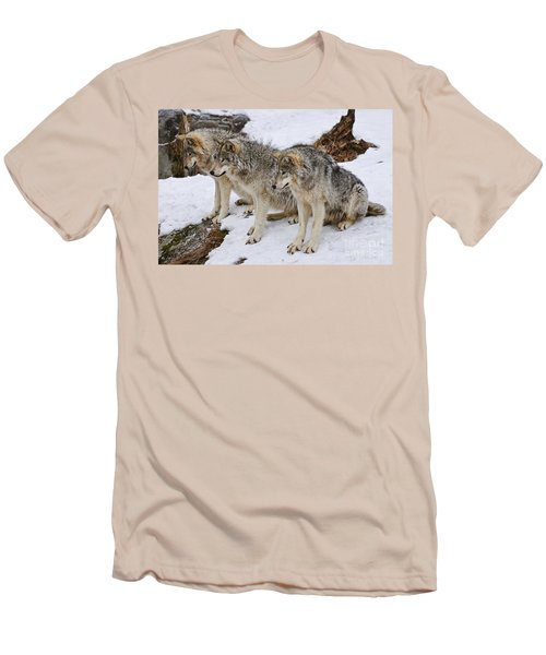 Three Kings Men's T-Shirt (Slim Fit) by Wolves Only
