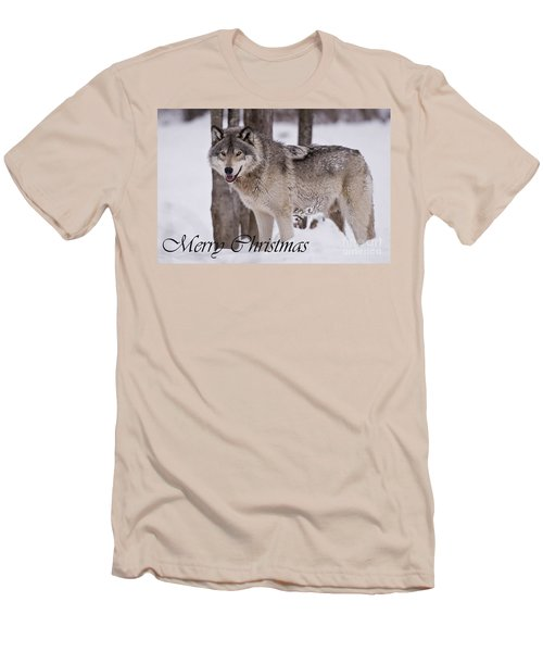 Timber Wolf Christmas Card English 3 Men's T-Shirt (Slim Fit) by Wolves Only