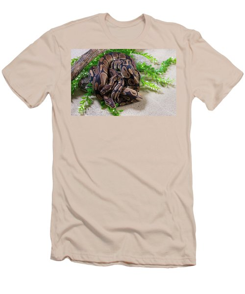 Two Burmese Pythons Python Bivittatus Men's T-Shirt (Athletic Fit)