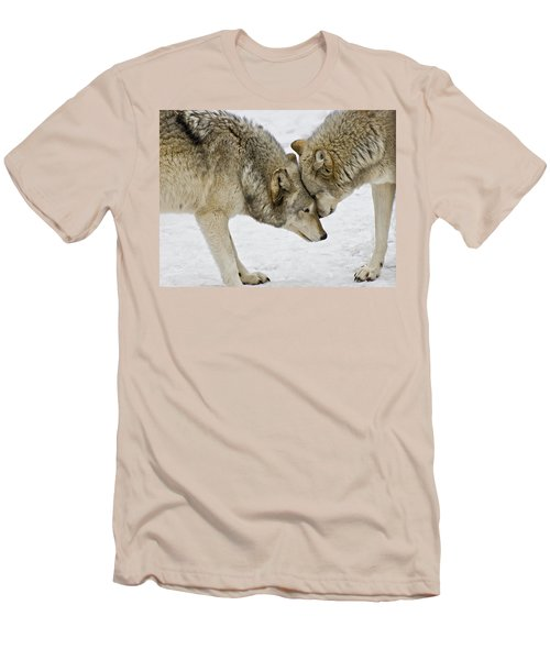 Two Wolves In  A Staredown Men's T-Shirt (Slim Fit) by Gary Slawsky