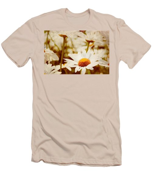 Vintage Daisy Men's T-Shirt (Athletic Fit)