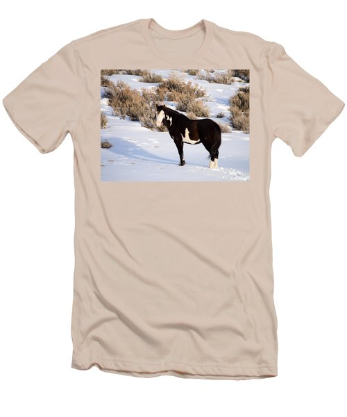 Wild Horse Stallion Men's T-Shirt (Athletic Fit)