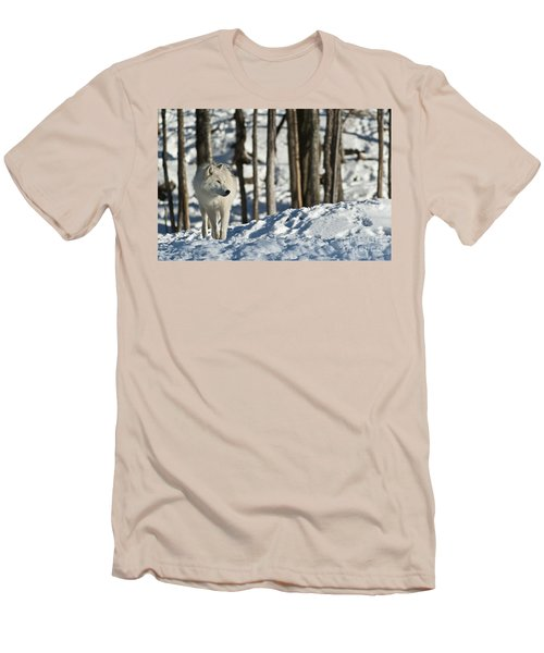 Men's T-Shirt (Slim Fit) featuring the photograph Winter Arctic Wolf by Wolves Only