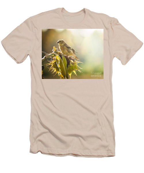 Men's T-Shirt (Slim Fit) featuring the photograph Finch Aglow by Cheryl Baxter