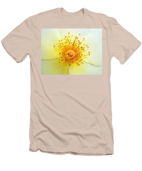 Rosa Golden Wings Men's T-Shirt (Athletic Fit)