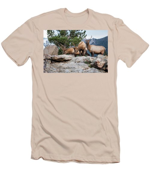 Wapiti Men's T-Shirt (Athletic Fit)