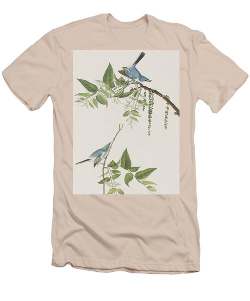 Blue Grey Flycatcher Men's T-Shirt (Athletic Fit)