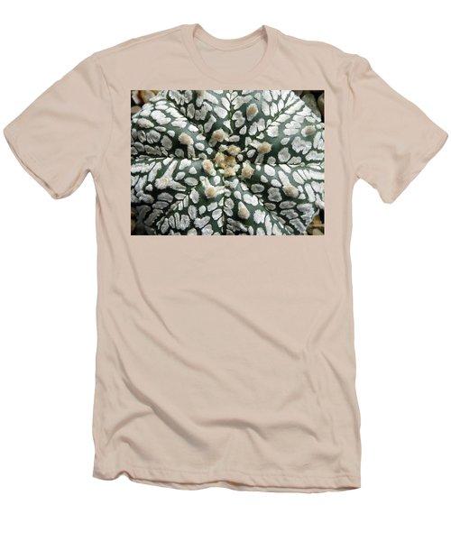 Cactus 1 Men's T-Shirt (Slim Fit) by Selena Boron