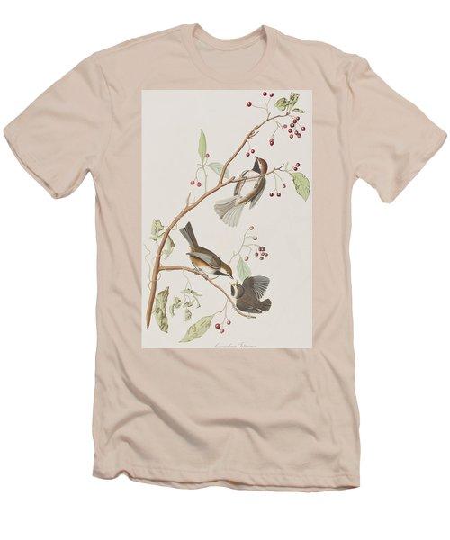Canadian Titmouse Men's T-Shirt (Athletic Fit)