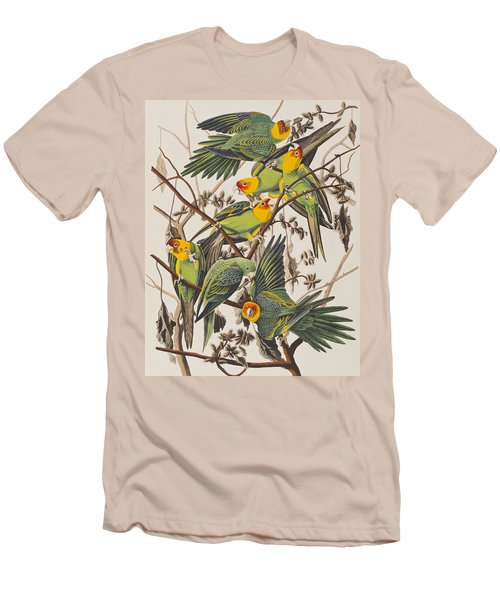 Carolina Parrot Men's T-Shirt (Athletic Fit)