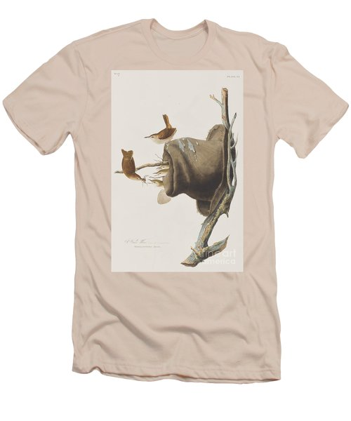 House Wren Men's T-Shirt (Athletic Fit)