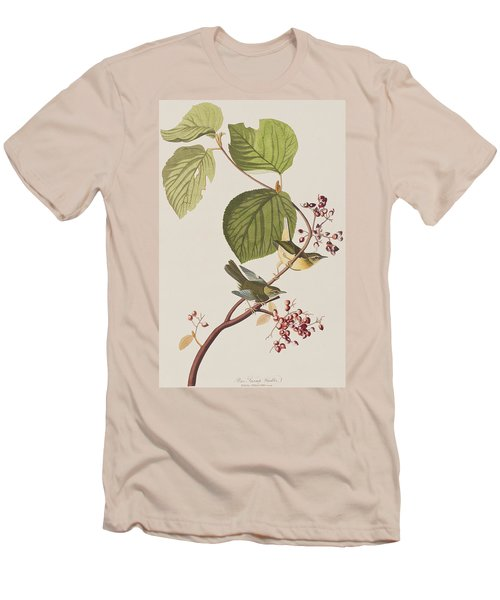 Pine Swamp Warbler Men's T-Shirt (Slim Fit) by John James Audubon