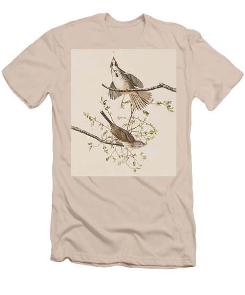 Song Sparrow Men's T-Shirt (Slim Fit) by John James Audubon