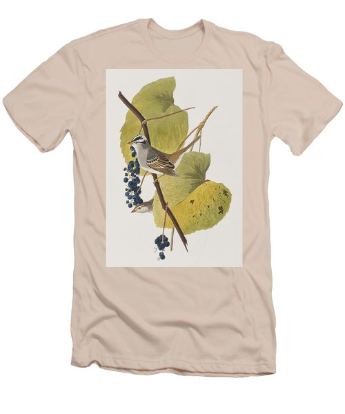 White-crowned Sparrow Men's T-Shirt (Slim Fit) by John James Audubon