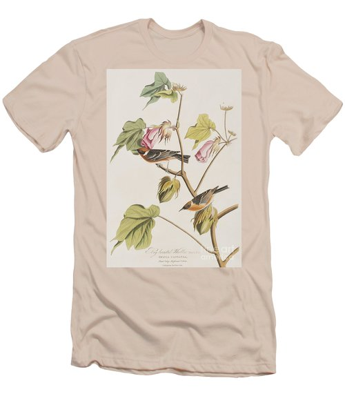 Bay Breasted Warbler Men's T-Shirt (Athletic Fit)