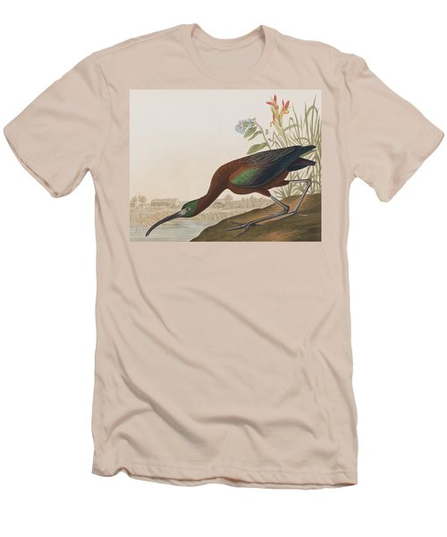 Glossy Ibis Men's T-Shirt (Slim Fit) by John James Audubon