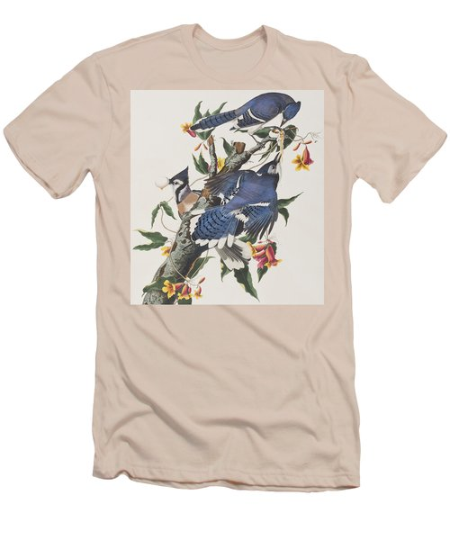 Blue Jay Men's T-Shirt (Slim Fit) by John James Audubon