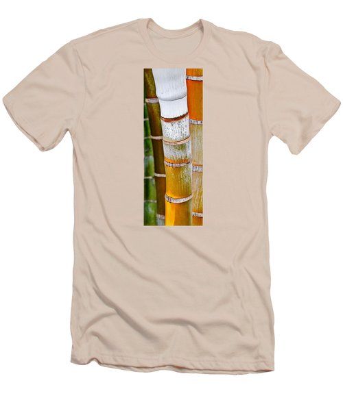 Bamboo Palm Men's T-Shirt (Slim Fit) by Werner Lehmann