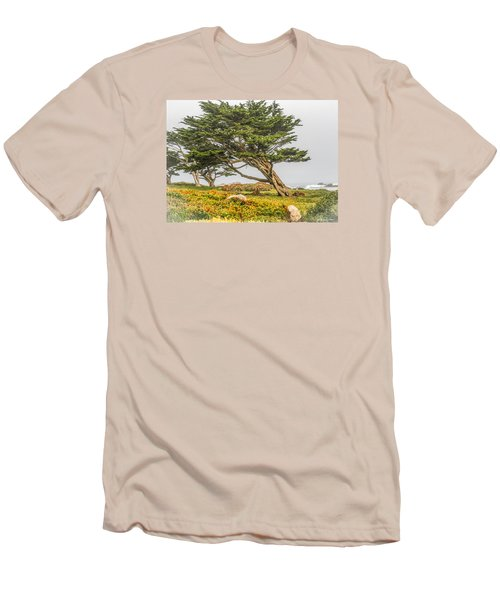 #7803 - Monterey, California Men's T-Shirt (Athletic Fit)
