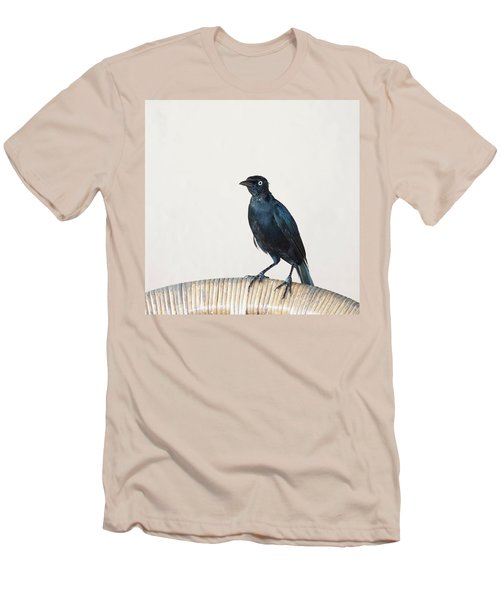 A Carib Grackle (quiscalus Lugubris) On Men's T-Shirt (Athletic Fit)