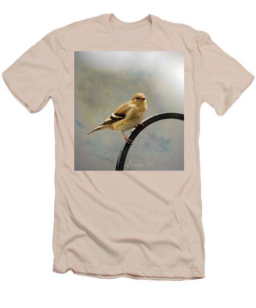 American Goldfinch Men's T-Shirt (Slim Fit) by Diane Giurco