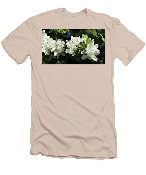 Apple Blossoms 2017 Men's T-Shirt (Athletic Fit)